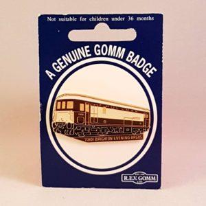 Class 73 Badge 73101